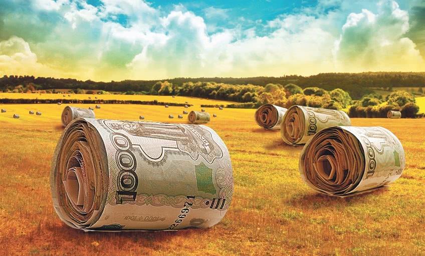 Как получить грант на сельское хозяйство