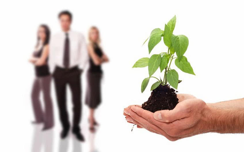 Виды помощи для малого бизнеса