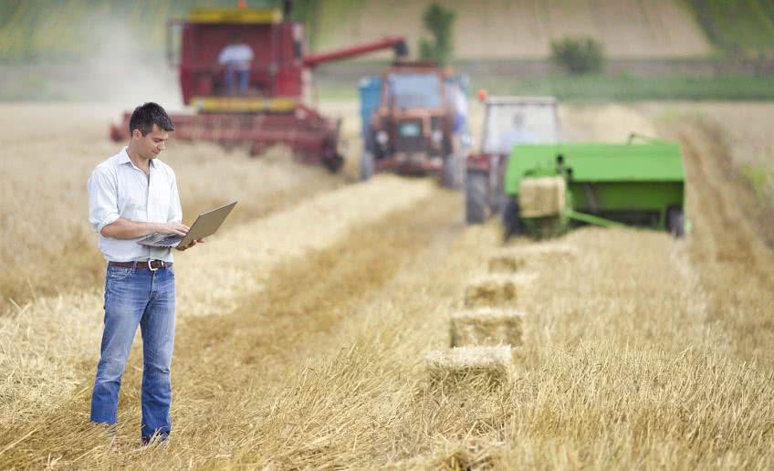 Кто платит единый сельскохозяйственный налог