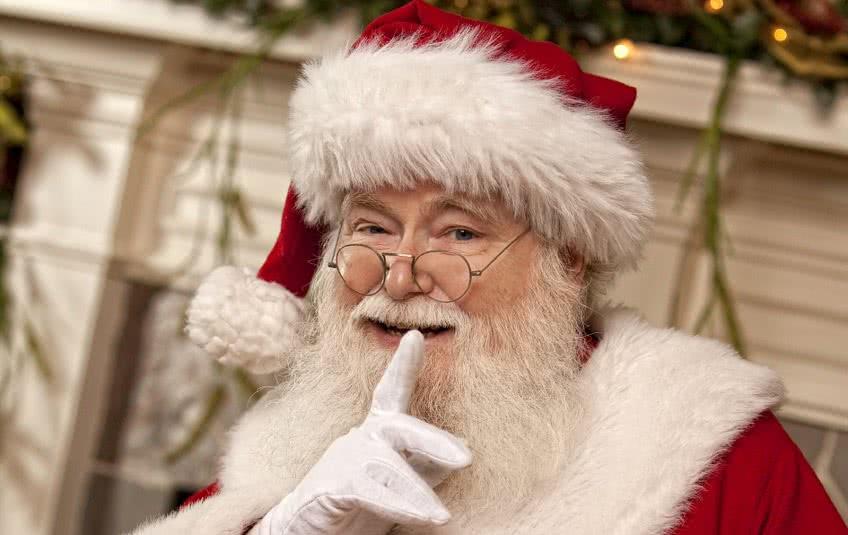 Бизнес Дед Мороз на дом