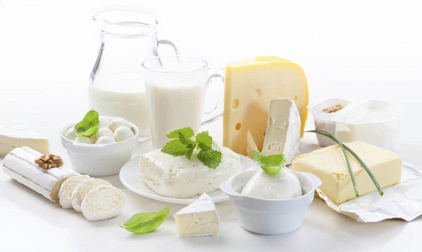 Как организовать бизнес по переработке молока