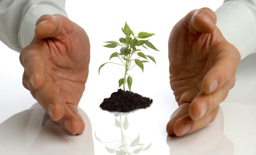 Виды поддержки малого бизнеса