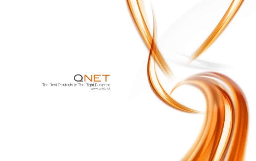 Бизнес в компании Qnet
