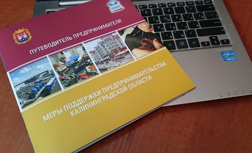 Подержка бизнса в Калининградской области