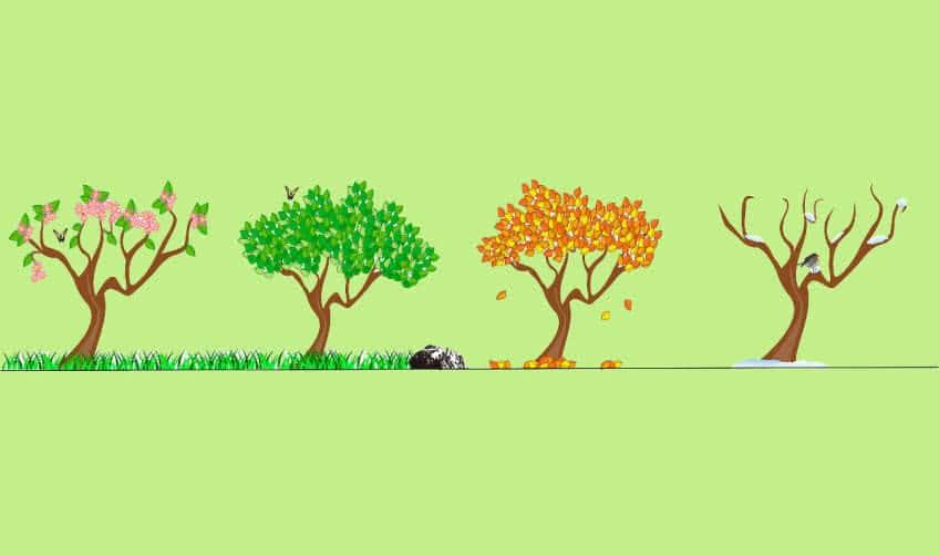 Бизнес и сезонность