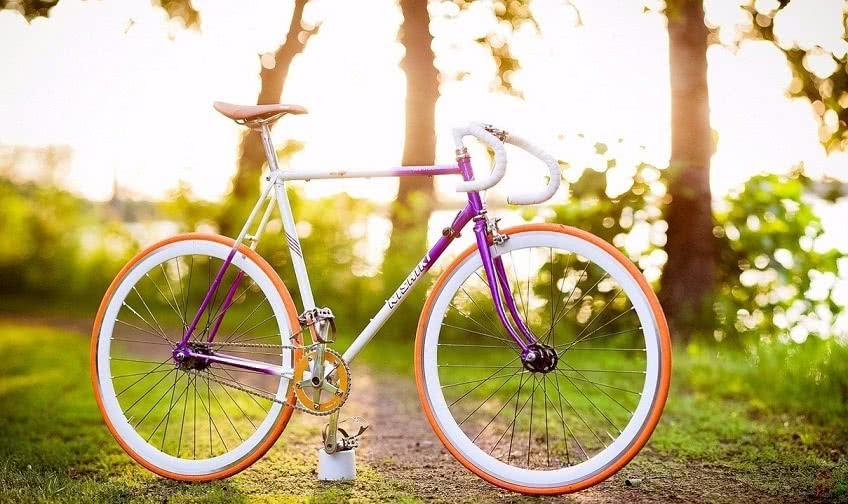 Организация бизнеса по прокату велосипедов