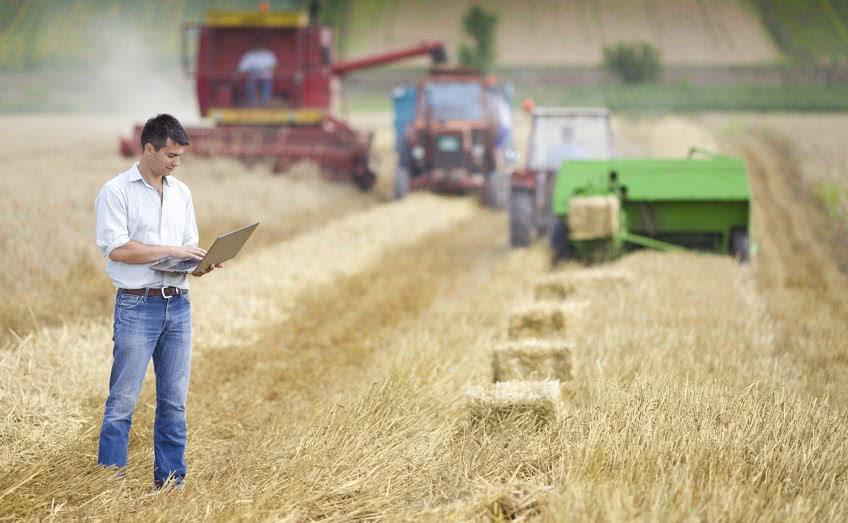 Бухгалтерский учет сельскохозяйственного предприятия