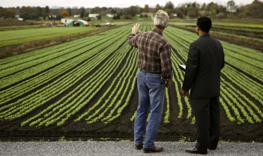 Каким бизнесом заняться в сельской местности?