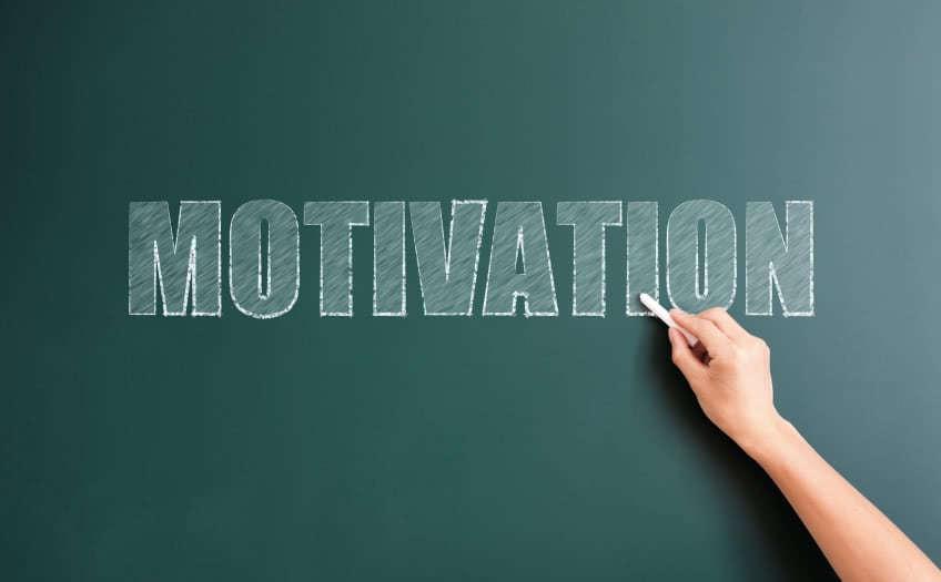"Шапиро ""Мотивация и стимулирование персонала"""