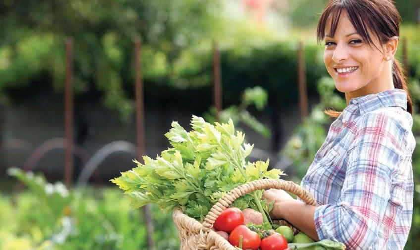 Бизнес в сфере фермерского хозяйства
