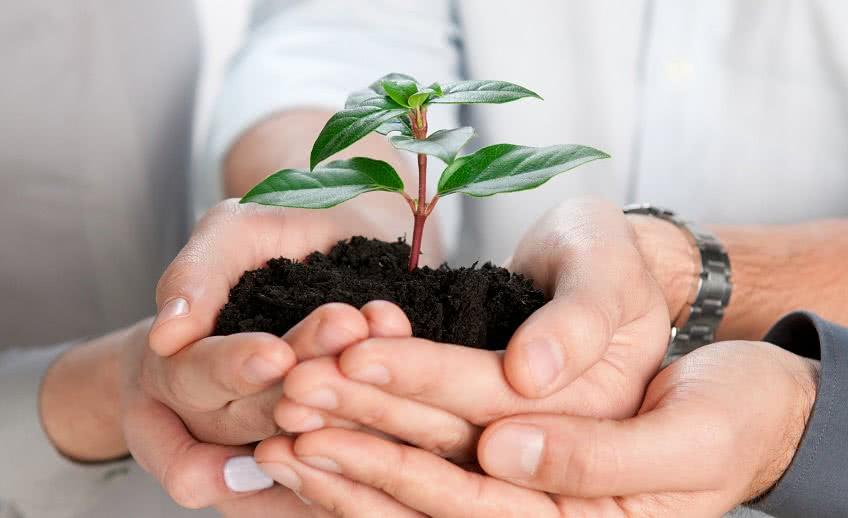 Формы поддержки малого бизнеса