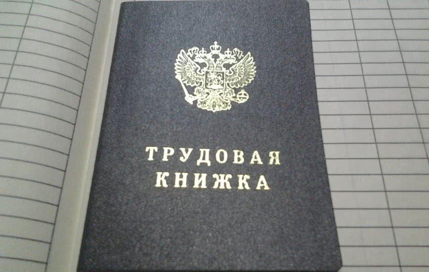 Трудовая книжка нового образца