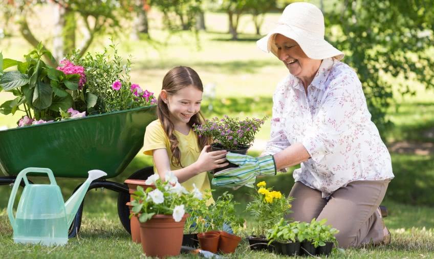 Как зарабатывать на помощи пожилым